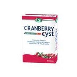 Cranberry cyst (ESI)